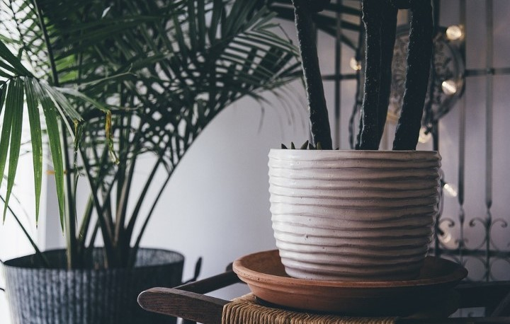 Indoor Plant Pots – How To Beautify Your Home With Artificial Plants